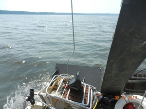 Wave action on open water areas, not large , but enough to be troublesome for canoe in cradle and cuts fuel consumption