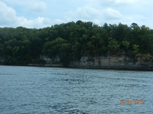 Cliffs along the Muscle Shoals side of he river